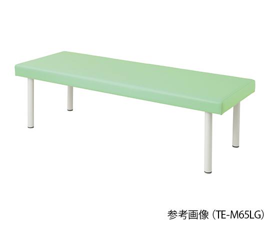 介護 引き出物 新色追加 医療用品 ベッド関連 カラフル診察台 ベッド高さ600mm ライムグリーン 4589638302268