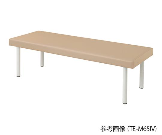 介護 発売モデル 医療用品 セール品 ベッド関連 カラフル診察台 アイボリー ベッド高さ600mm 4589638302305