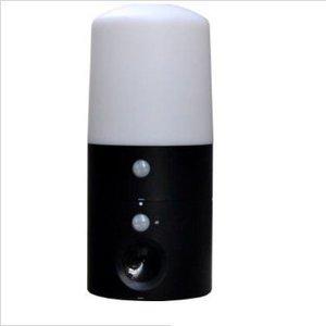 インテリムジャパン アニマルバリア ブラックミニ+LEDガーデンライト IJ-ANB-05-LED