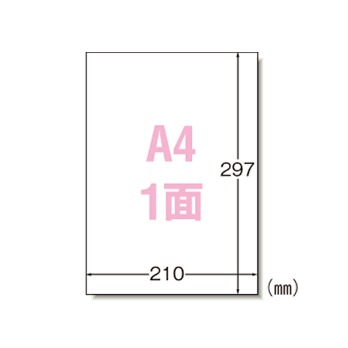 エーワン マルチプリンタラベルA4ノ-カット 31151