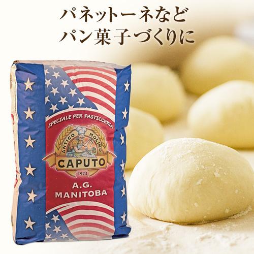 送料無料 同梱不可 日時指定不可 カプート 年末年始大決算 超歓迎された マニトバ ティーポ0 Caputo 25kg