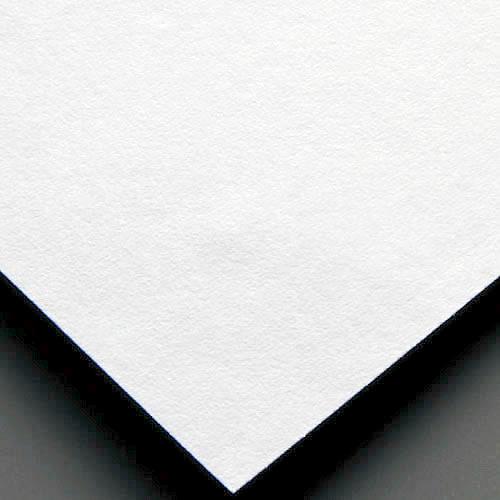ハーフバックカバープレーンホワイト WIDE