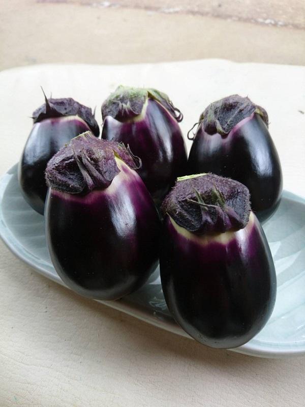 新潟 十全茄子 黒いダイヤモンドと呼ばれる黒十全茄子を浅漬けにするとサッパリ最高な味です 2020 なす 朝採れ 黒十全茄子 茄子漬の素付き 約3.5kg やまちゃん農園 宅配便送料無料 産地直送 35個入り
