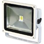 【送料無料!投光器が格安価格】日動 LEDエコナイター30 LEN30DESW [367-8946] 【投光器】[LEN-30D-ES-W]