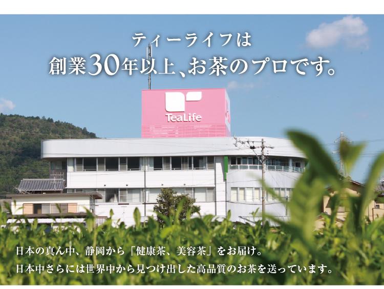 【TEA LIFE】静冈绿茶 养生茶袋泡茶进口茶 日本直邮 100包/袋 1袋装