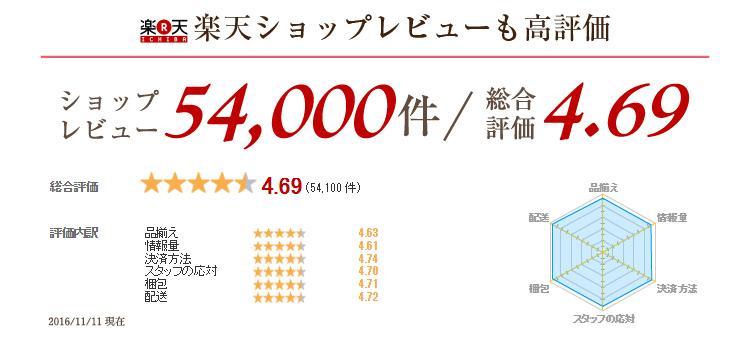 静冈绿茶(100包)