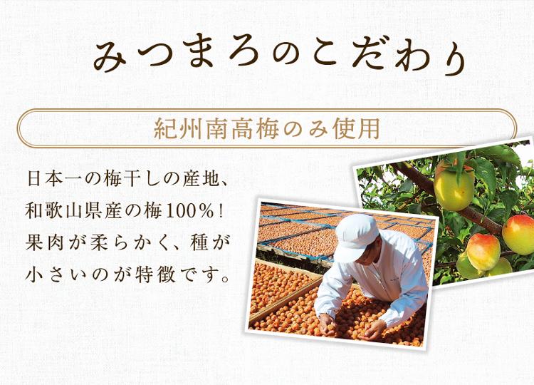 紀州の梅 みつまろ 500g 塩分:約8%  はちみつ梅 ハチミツ梅 蜂蜜梅  梅干し 梅干 梅 うめ  ティーライフ
