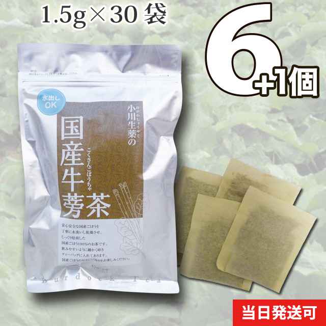 【送料無料】 小川生薬 国産ごぼう茶 国産 1.5g×30袋 無漂白ティーバッグ 6個セットさらにもう1個プレゼントさらに2パック入りを2個プレゼント