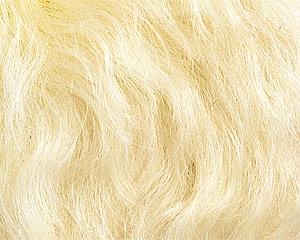 カールモヘア ミルキーホワイト  1/4ヤード(約70cm×約45.5cm)