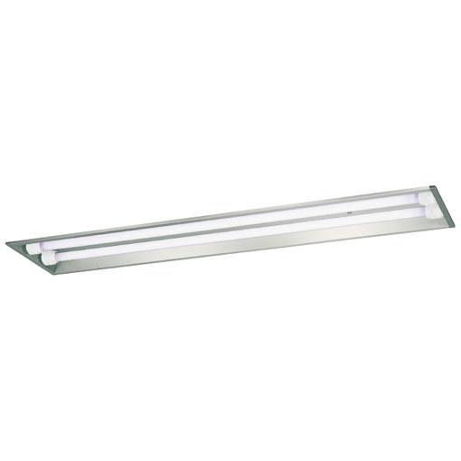 岩崎電気 ELEW40251APFH9 防雨形・防湿形直管LEDランプ LDL40用ベースライト 下面開放形 固定出力形 昼白色タイプ
