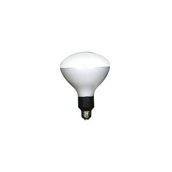 岩崎 10個セット PRF500W 電球 写真照明用 E26 R127 散光