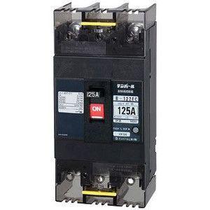 テンパール工業 B-122EC 125A 配線用遮断器 Eシリーズ (経済タイプ) 『 B122EC12』 『B122EC125A 』