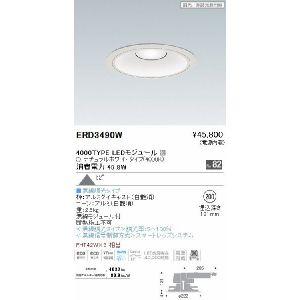 遠藤照明(ENDO) ERD3490W 照明器具 リプレイスダウンライト