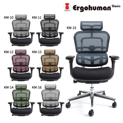 【組立無料】エルゴヒューマン ベーシック EH-HBM モールドクッション座面 ハイタイプ Ergohuman Basic【代引き不可】