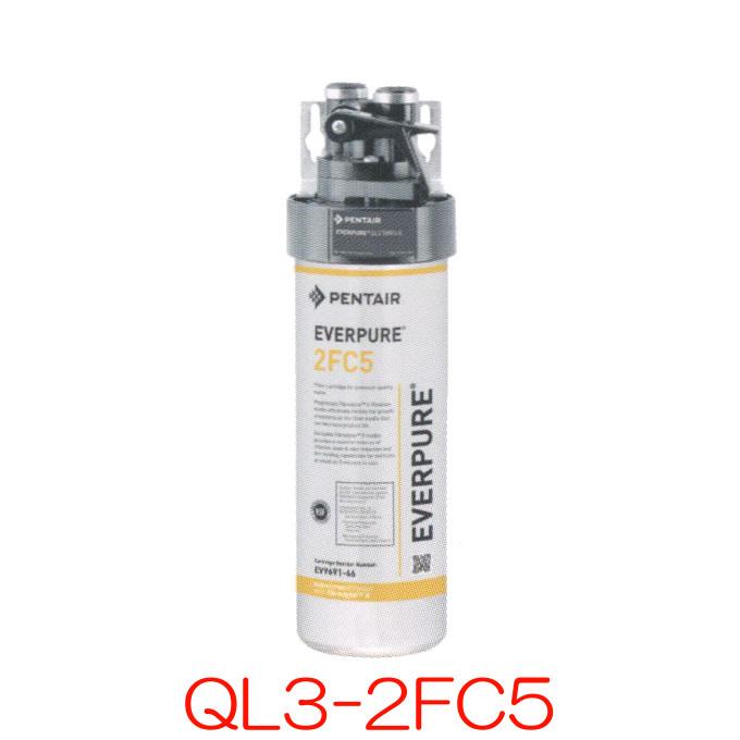 エバーピュア 業務用浄水器 QL3-2FC5