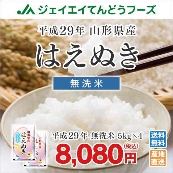 【東北から近畿まで送料無料】 5kg×4袋 【洗米いらず胚芽米】 【鮮度活き活き健康米】 【29年山形産】