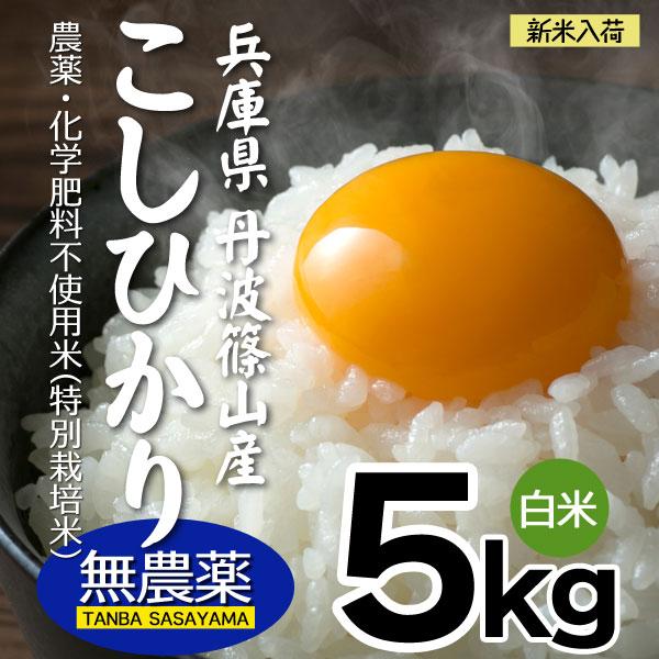 無農薬 新米 5kg 令和元年産 こしひかり 白米 丹波篠山産 特別栽培コシヒカリ 兵庫県