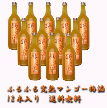 【送料無料】 完熟マンゴー梅酒 ふるふる 720ml 12本入り  【送料無料】