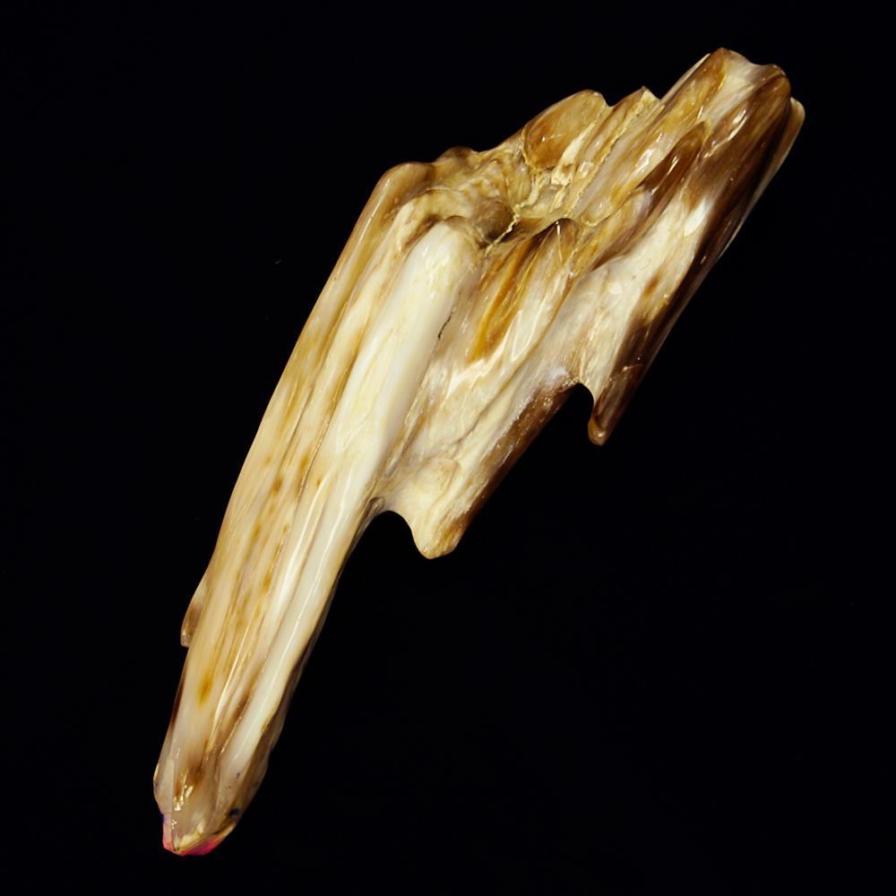 精霊の宿る天然石 樹化玉 (樹化石) 台座付1321g インテリアストーン 置物 パワーストーン 化石