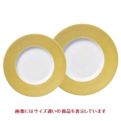 プレート プレート 28cm_ゴールド IleDesPins/φ280×H32mm/4入/業務用/新品 /テンポス
