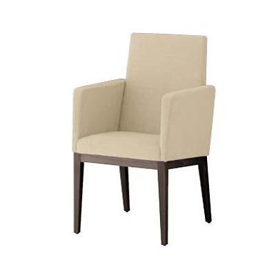 オーツー 肘付椅子 [エクセドラ/両肘] 張地ランクB 幅535×奥行540×高さ900/座面までの高さ450【送料別】【新品】【業務用】