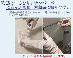 あす楽 水垢 洗剤 お風呂 水垢落とし 透けーるテクニック 100ml/100g ナイロンたわし付