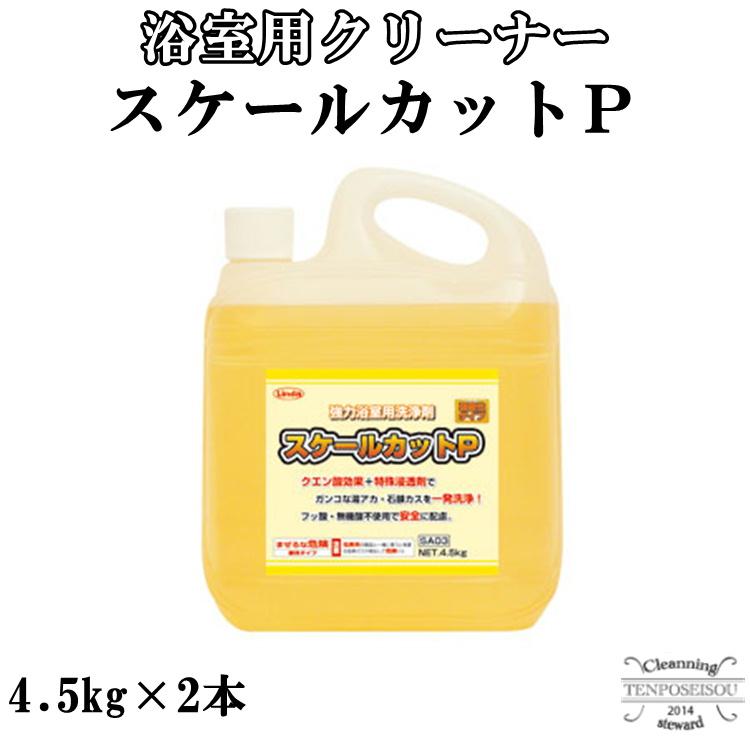 浴室用 スケールカットP 4.5kg×2本 横浜油脂工業