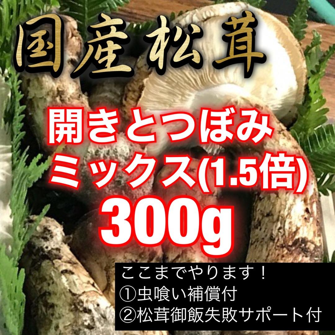 つぼみはすき焼きや天ぷらで開きの傘の部分は松茸御飯にと松茸づくしのバラエティー料理にも最適 新作通販 開きは出るのが遅いので十月に入ってのお届けになると思います 国産松茸つぼみと開きのミックス300g 激安通販専門店