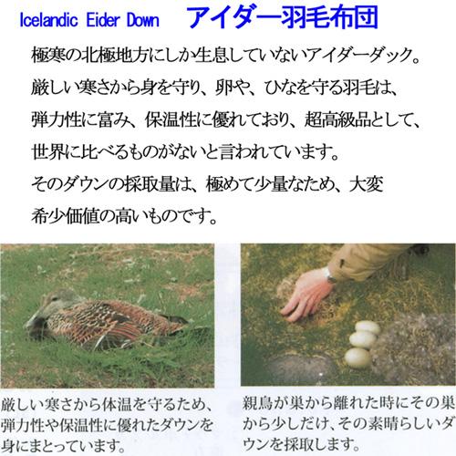 Kyoto Nishikawa Eider down quilt silk quilt made in Japan SL ◆ tatsumura  art woven feather duvet single long size 150 x 210 cm