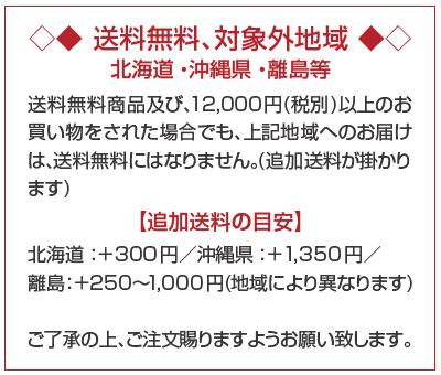 ★★把名字对完全的数量限定★★窗进入的♪原始物名放进去烧酒JAPAN GOLD[日本·黄金]金箔入700ml 25度