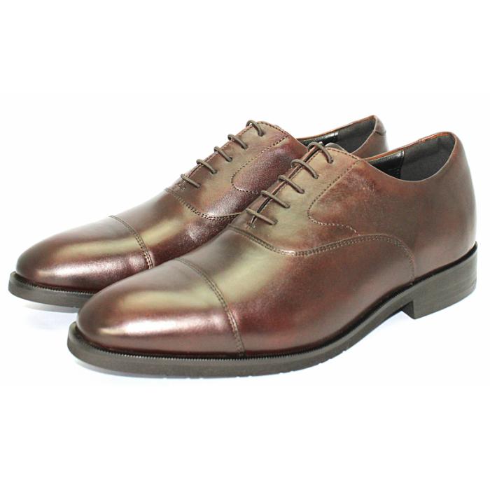 履き心地柔らかなストレートチップ TERRA 売り出し SHOE 直営ストア STORE 内羽根ストレートチップ 紳士靴 24.5cm~27.0cm 本革 ビジネスシューズ