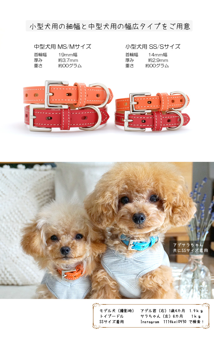 ★A constant seller of the fashion of the collar / dog ★ pet dog of the dog!  Medium-sized dog, dog collar [RCP] of the real leather for small dogs