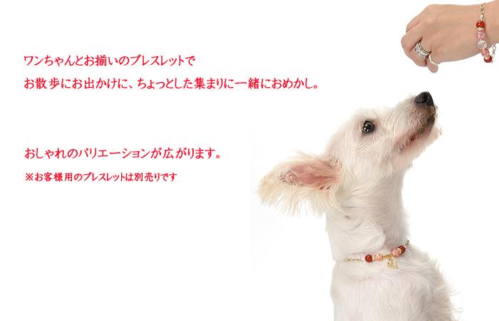 飼い主とお揃いで着けられる天然石の愛犬用アクセサリー(迷子札付き)天使の輪(レッド) カーネリアン パワーストーン メール便 愛犬のおしゃれに犬用ネックレス ネームタグ IDタグ