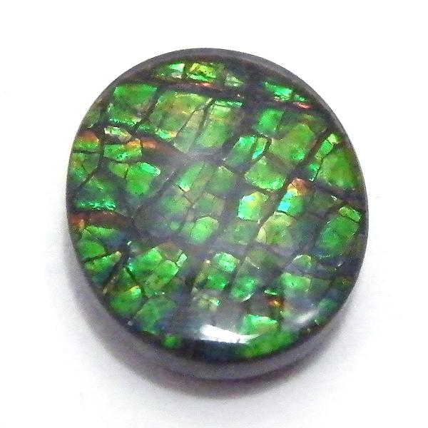 アンモライト(Ammolite) 1点限定 トリプレットルース 約10x12mm 3.60ct 裸石 ルース アンモナイト