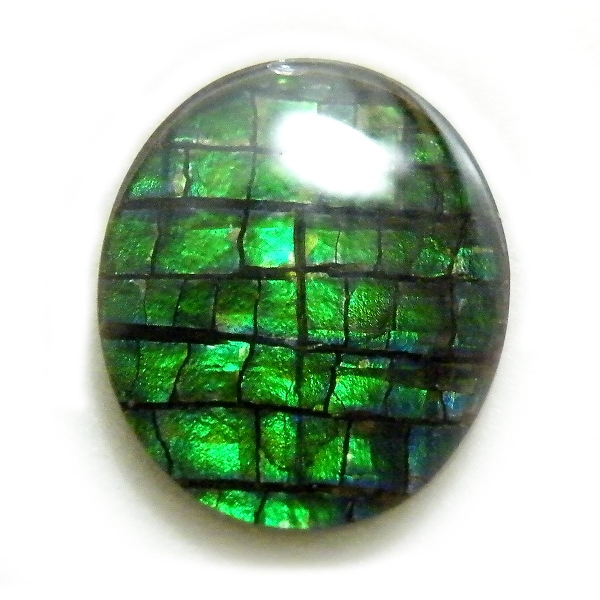 アンモライト(Ammolite) 1点限定 トリプレットルース 約10x12mm 3.03ct 裸石 ルース アンモナイト