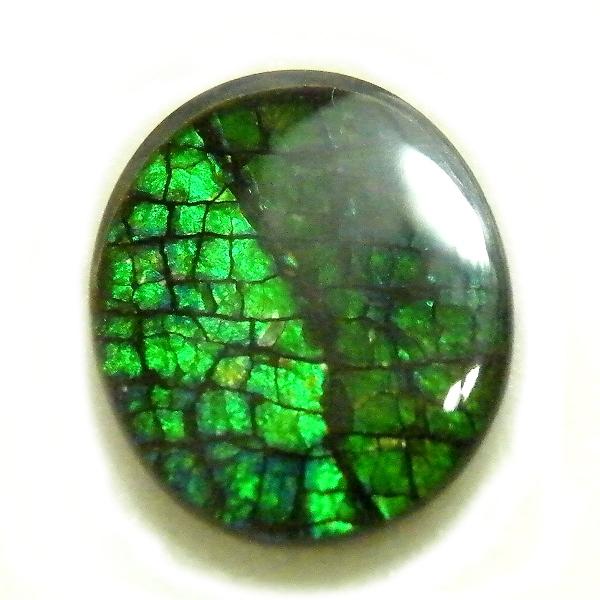アンモライト(Ammolite) 1点限定 トリプレットルース 約9x11mm 2.50ct 裸石 ルース アンモナイト