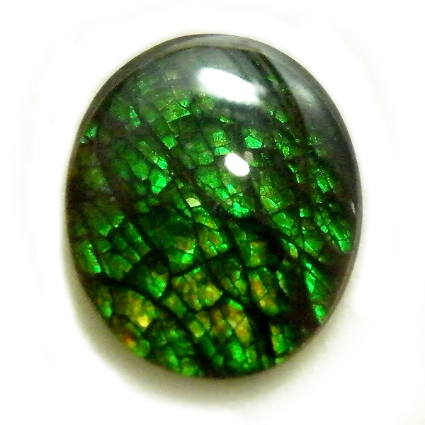アンモライト(Ammolite) 1点限定 トリプレットルース 約9x11mm 2.27ct 裸石 ルース アンモナイト