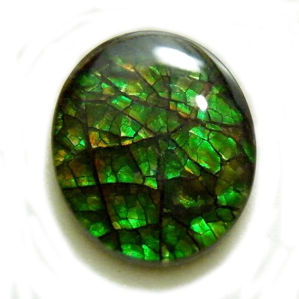 アンモライト(Ammolite) 1点限定 トリプレットルース 約10x12mm 3.57ct 裸石 ルース アンモナイト