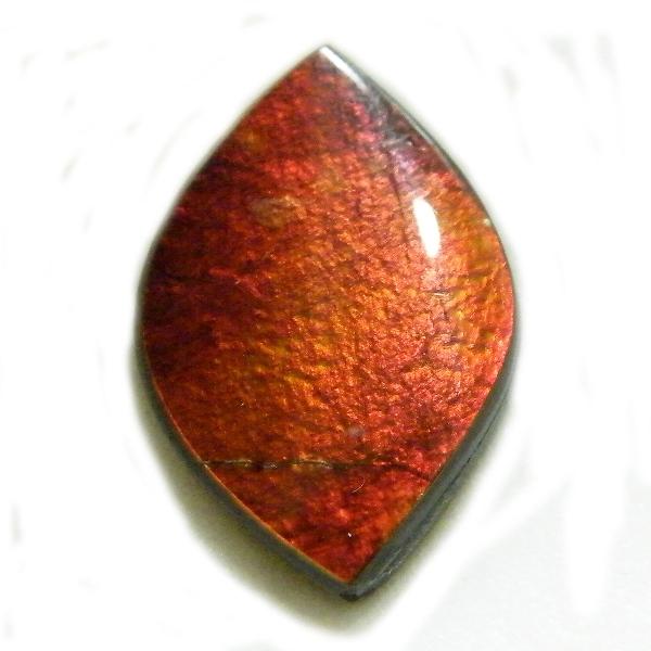 アンモライト(Ammolite) 1点限定 トリプレットルース 約14x20mm 7.71ct 裸石 ルース アンモナイト