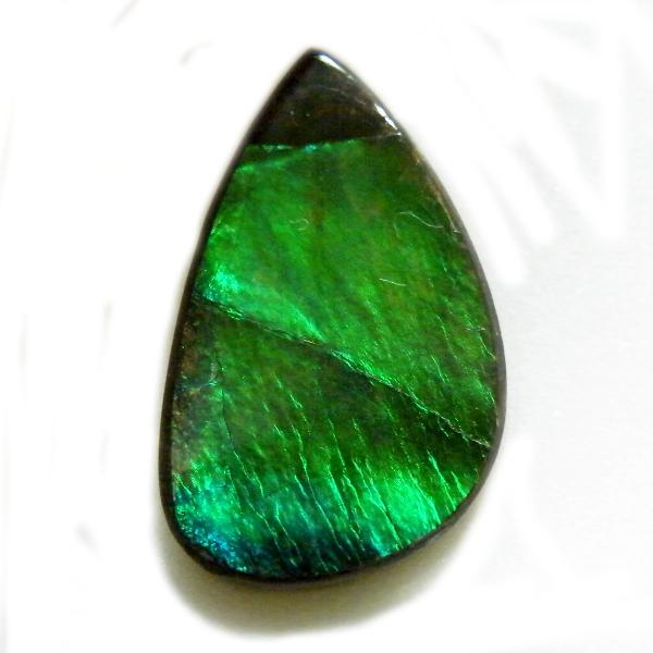 アンモライト(Ammolite) 1点限定 トリプレットルース 約13x20.5mm 7.76ct 裸石 ルース アンモナイト