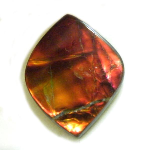 アンモライト(Ammolite) 1点限定 トリプレットルース 約16.5x21mm 9.98ct 裸石 ルース アンモナイト