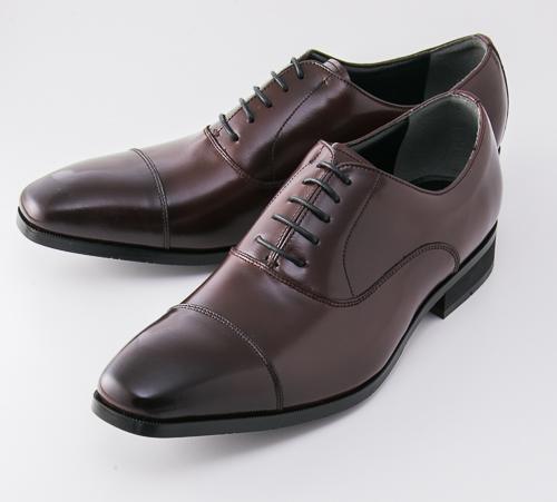 【エントリーでポイント5倍! 11/1 0:00 - 12/1 9:59まで】【送料無料】紳士靴 texcy luxe(テクシーリュクス) TU-808 バーガンディ ビジネスシューズ アシックス