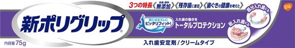 (10個セット)GSK 新ポリグリップトータルプロテクション 75G|まとめ買い