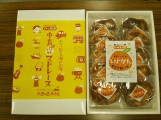 中島いよかんマドレーヌ 10個入 71549:食品(直)