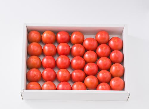 高糖度フルーツトマト 高知県夜須町産 A品 約2kg 野菜 トマト フルーツトマト高知|88879:野菜