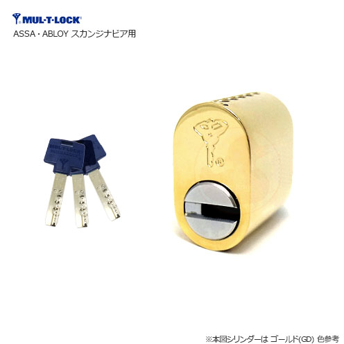 MUL-T-LOCK (multi lock) cylinder lock ASSA/ABLOY (ABLOY/ASSA) type imported  housing key replacement replacement band for