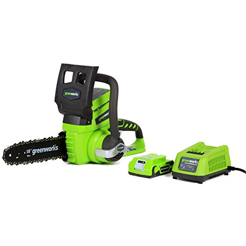 GreenWorks 20362 24V 10-インチ Cordless Chainsaw, 2Ah バッテリー and Charger インクルード 「汎用品」(海外取寄せ品)