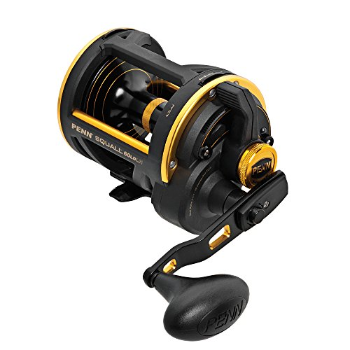 Penn Left ハンド Retrieve Squall Lever Drag Conventional Baitcast Reel (50-Pound/370-Yard) (海外取寄せ品)