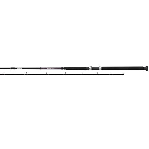 Daiwa Dipsy Heavy アクション Accudepth Trolling Rod (2 Piece), 9' 6