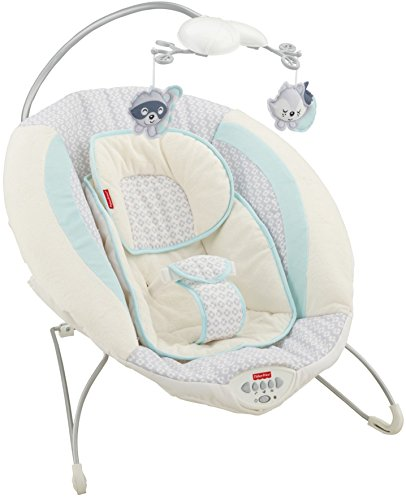Fisher-Price Moonlight Meadow Deluxe Bouncer 「汎用品」(海外取寄せ品)